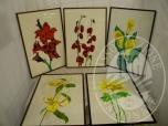 Immagine di Lotto formato da n 5 quadri con cornice, a firma Giandomenico, raffiguranti fiori, di mis.60x40cm