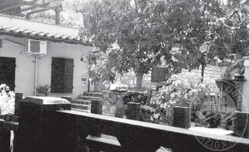 Immagine di SPELLO (PG) VIA DEGLI OLIVI 4